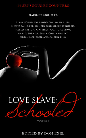 Love Slave: Schooled Cover Image